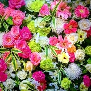 Floral_04